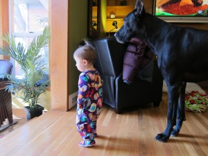 Gianna and Clyde Looking into the Sunroom